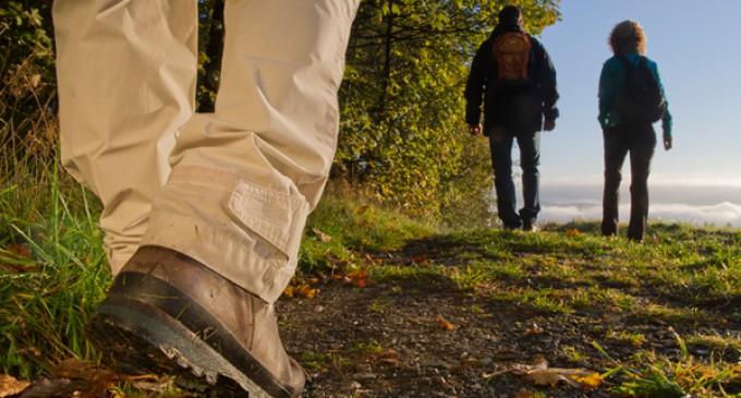 2-Tageswanderung des WKKV zur SGV-Hütte Bracht