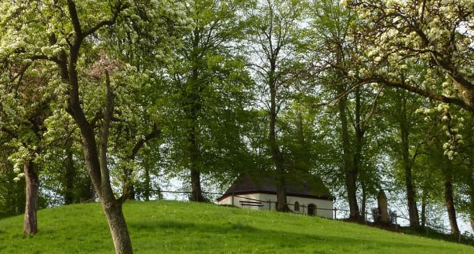 Blick auf den historischen Kapellenberg