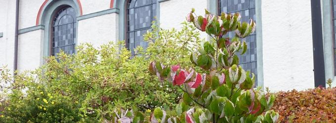 Rundbogenfenster mit Archivolten an der denkmalgeschützen Pfarrkirche