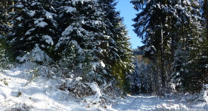 Winterzeit in Oedingen – romantisches Oedingen