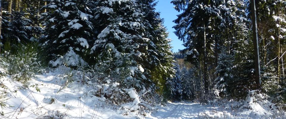 Bild von Winterzeit in Oedingen – romantisches Oedingen