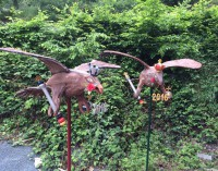 Schützenvögel 2016 offiziell vorgestellt – Vogelbauer leisten wieder Meisterarbeit
