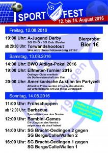 Sportfest Flyer Haushalte 2016 back