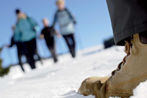winterwandern-1.jpg